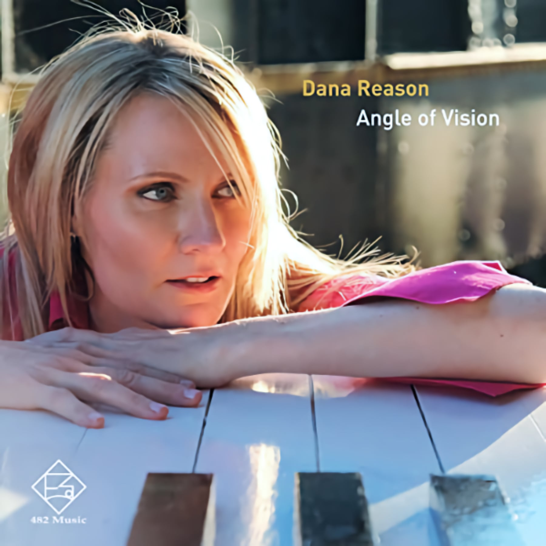 Dana Reason Angle of Vision